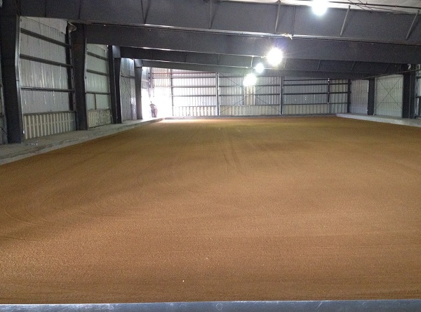 floor sand layer july2014